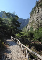 Near the entrance of the gorge of Agia Irini